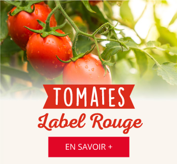 Tomate Label Rouge